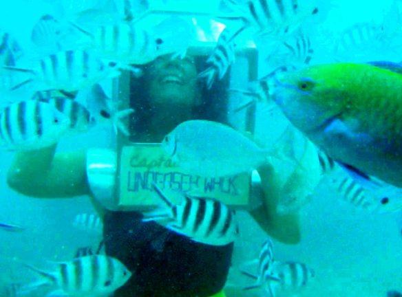 undersea_ines