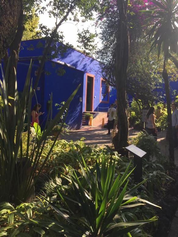casa azul pateo