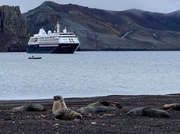 silver sea & foca